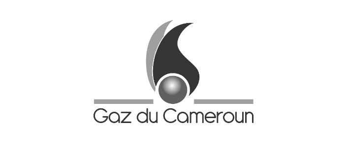 logo gaz cameroun